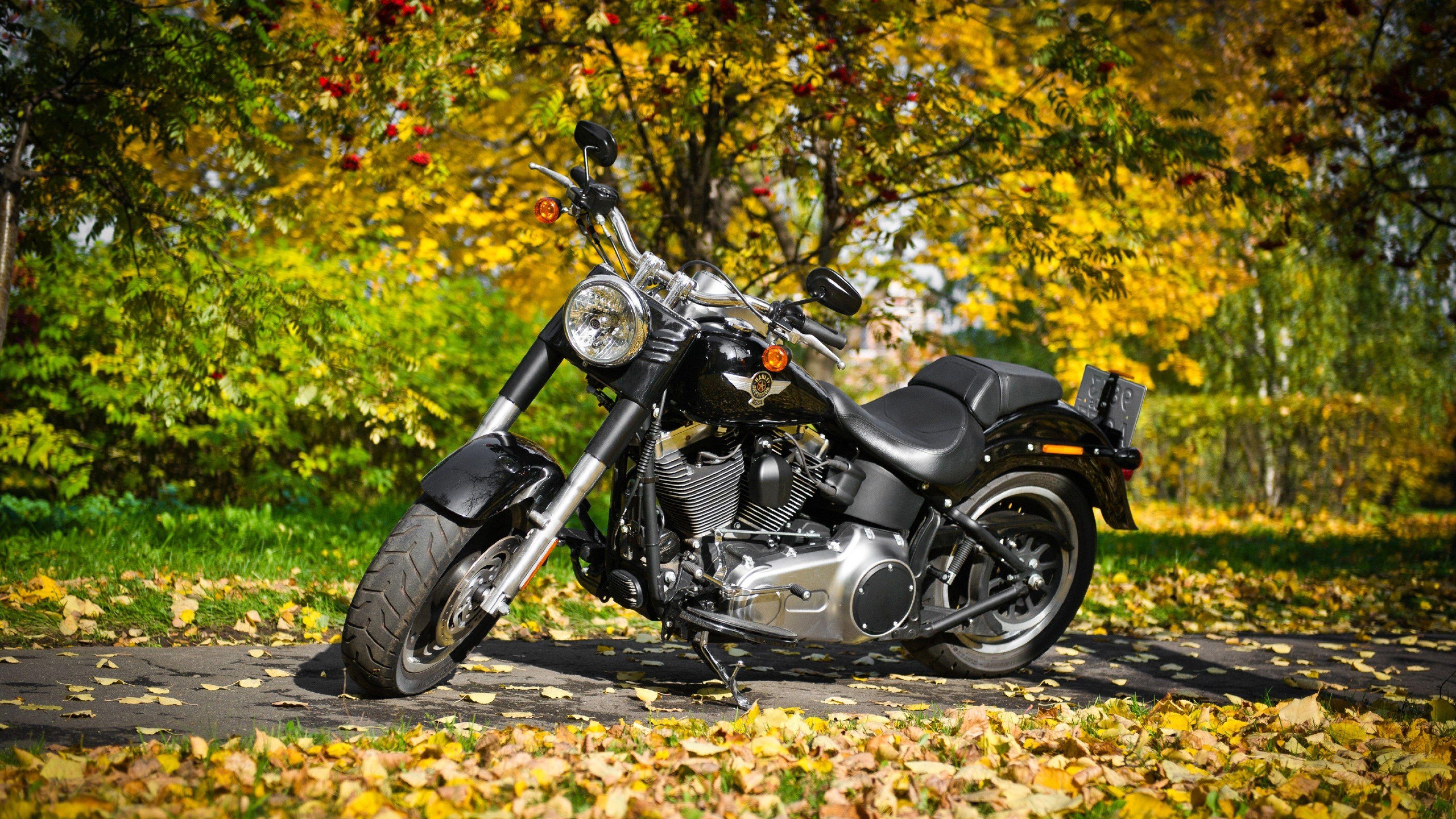 3840x2160 Harley Davidson 4k Wallpaper Desktop Free Download Harley Davidson Wallpaper Harley Davidson Motorcycle Wallpaper