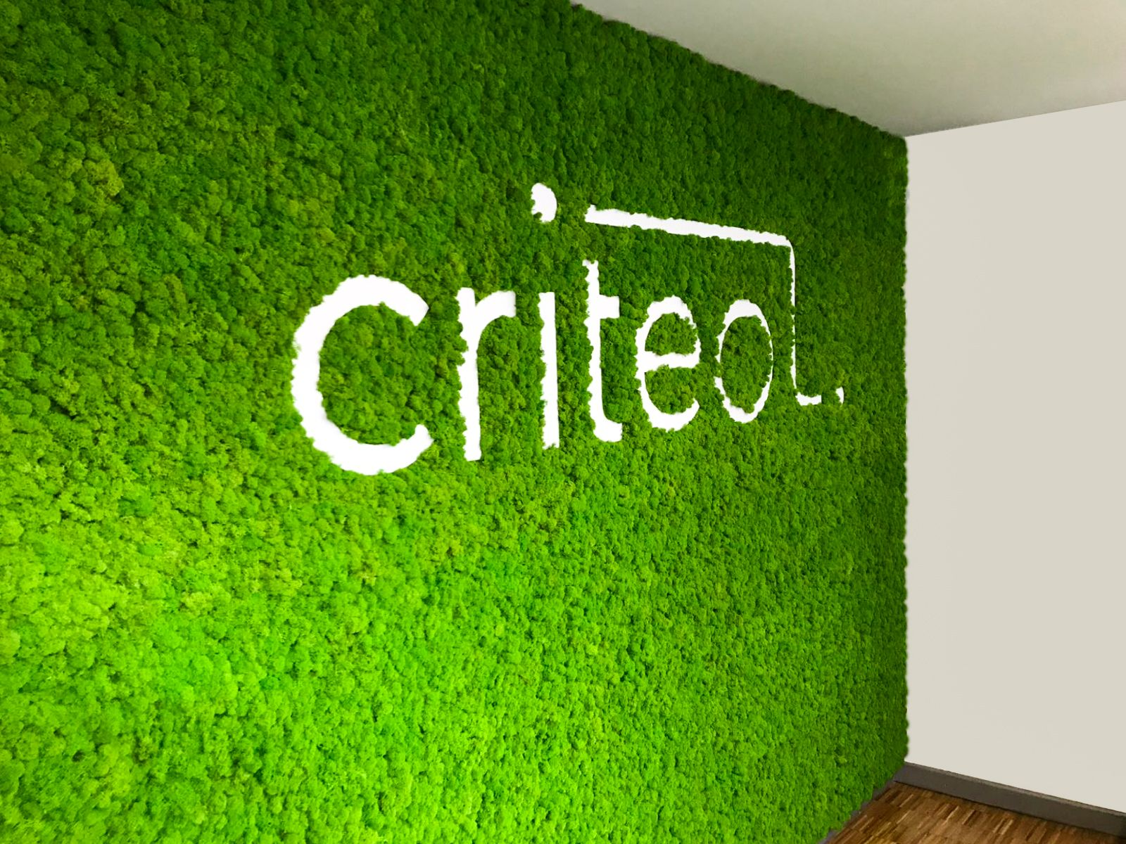 Pareti Verdi Verticali Costi moss design | moss wall art, logo wall, wall accessories