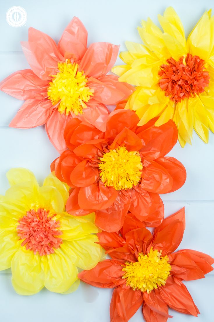 Giant Tissue Paper Flowers Easy Paper Craft Diy Diy Craft