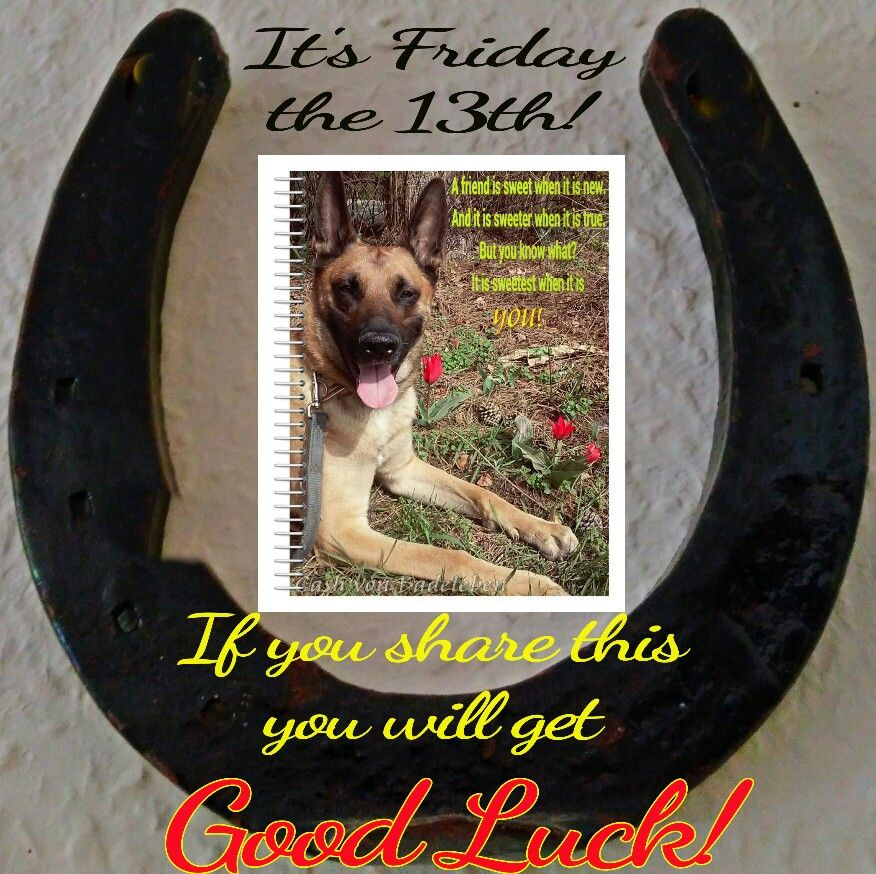 It's Friday the 13th! Good Luck friends <3 Don't forget I love you! <3  www.facebook.com/cash.von.badeleben