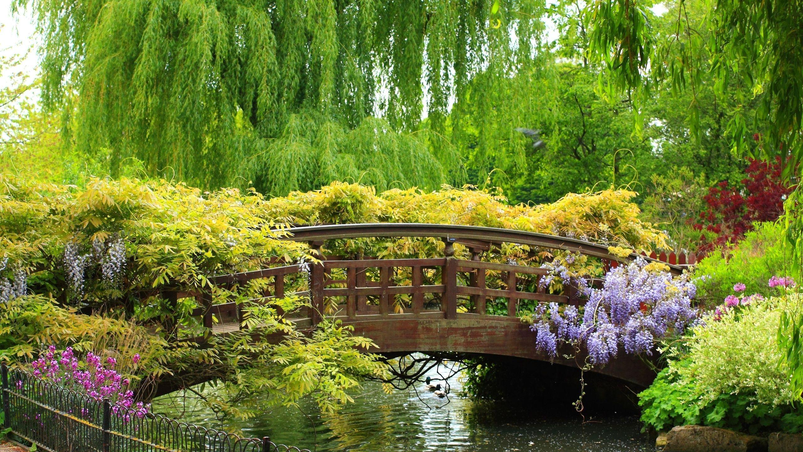 Картинки красивые природа на рабочий стол на весь экран (35 фото ... | 1440x2560