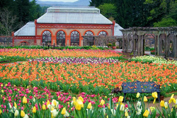14be710340db90e28254e7201c70b1fa - Can You Visit Biltmore Gardens For Free