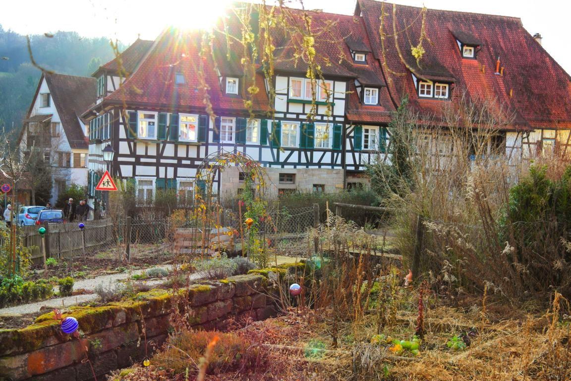 Besondere Ausflugsziele In Baden Wurttemberg Insidertipps In 2020 Ausflug Ausflugsziele Schwarzwald Urlaub
