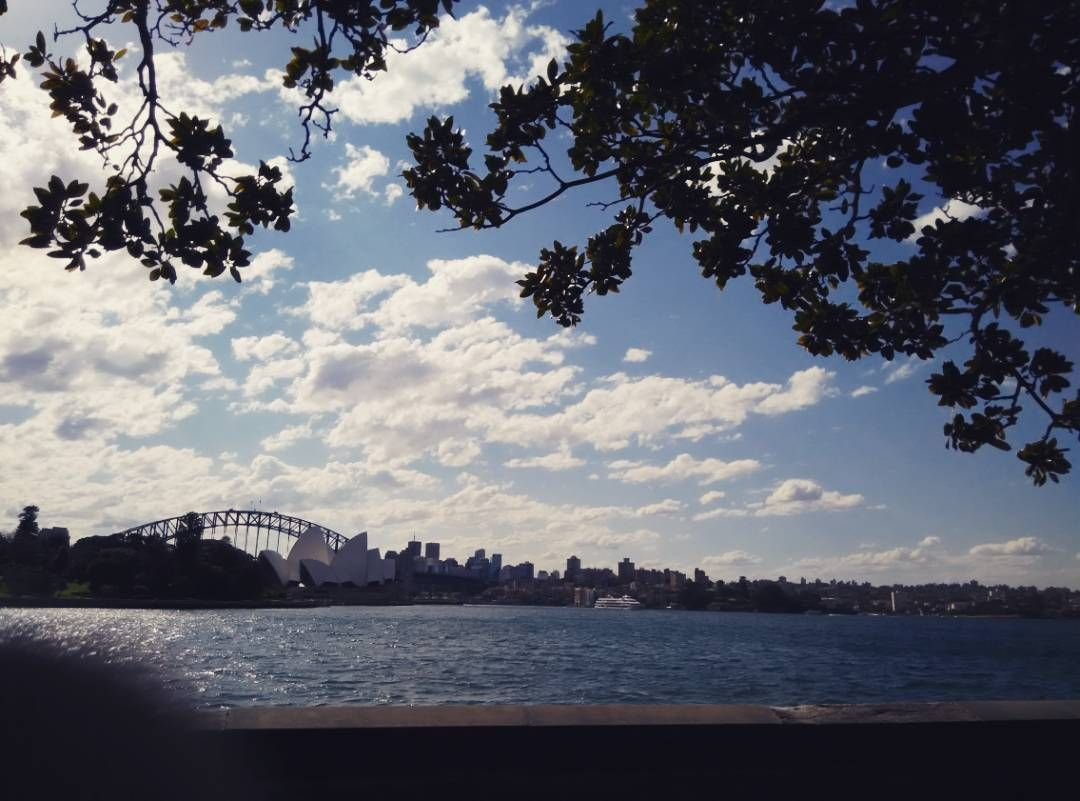 My first proper sighting of the #operahouse and #sydneyharbourbridge.  #rbgsydney you were so worth the visit.  #sydneydiaries #sydneytravel #beingatourist by miscoolies http://ift.tt/1NRMbNv