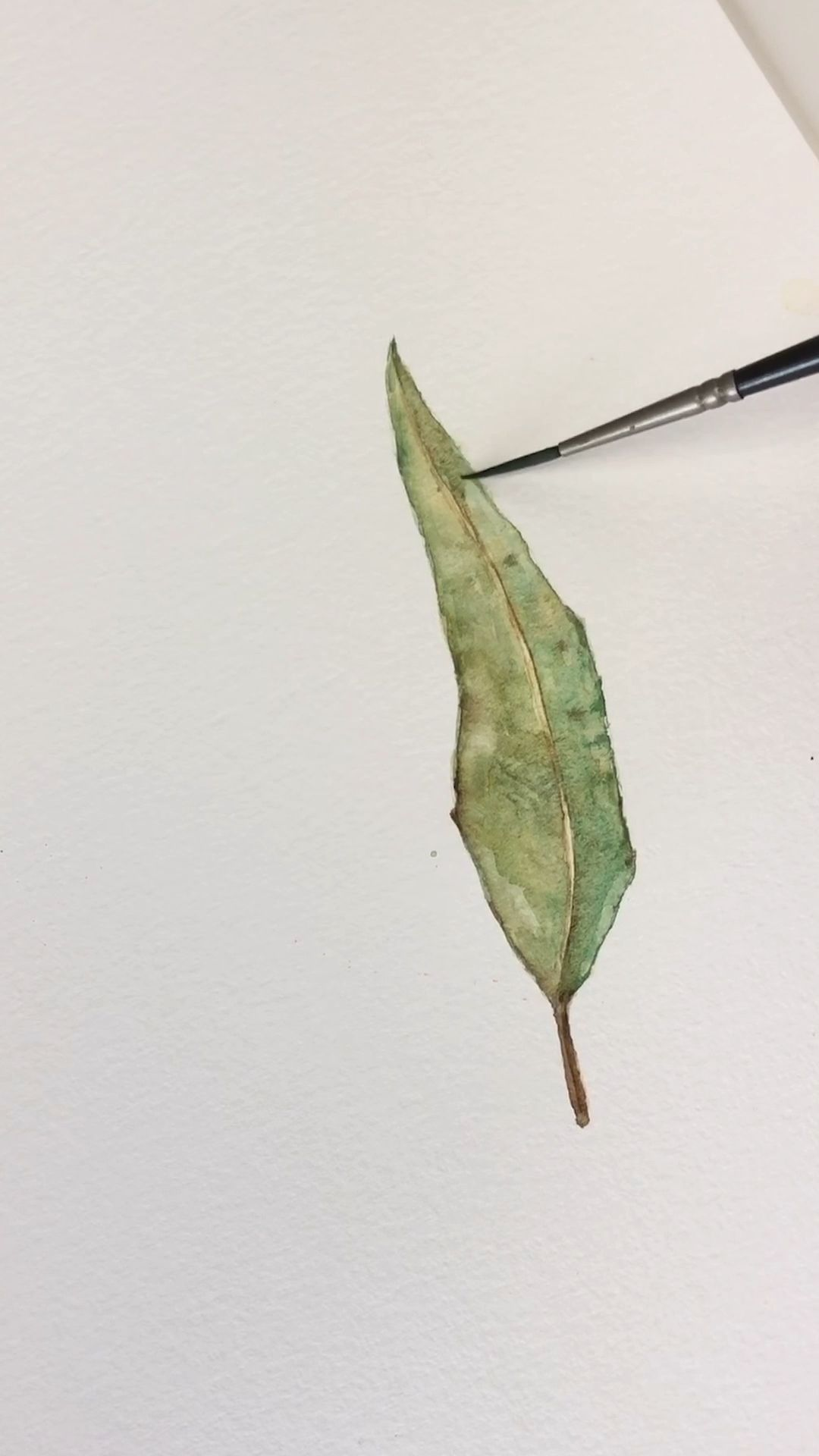 Watercolor Willow Leaf Tutorial In 2020 Watercolor Paintings