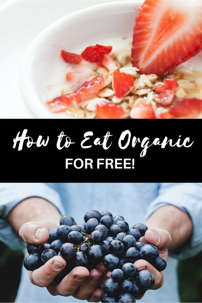 Key tips and tricks for how to eat organic food for free