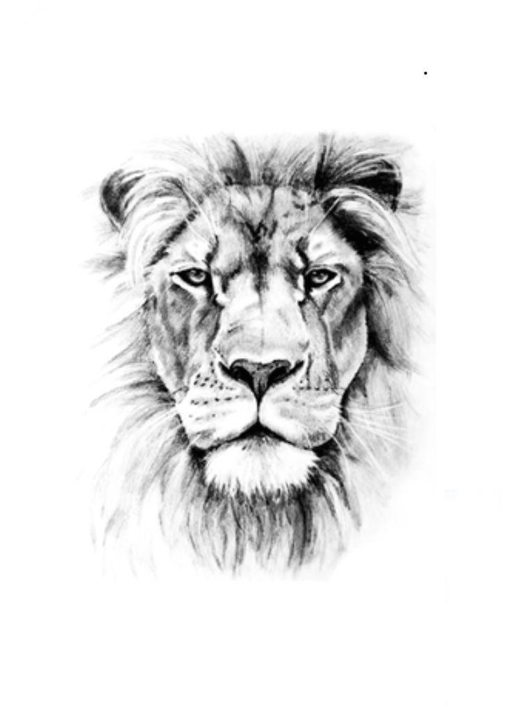Pin By Bobby Blythe On My Saves Tatouage Tatouage Lion Tatouage