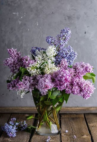 Bu Best Flowers And Gift In Chennai Through Buyflower This Is A Very Popular Company In The Matter Of Online Shop Lilac Flowers Lilac Bouquet Beautiful Flowers