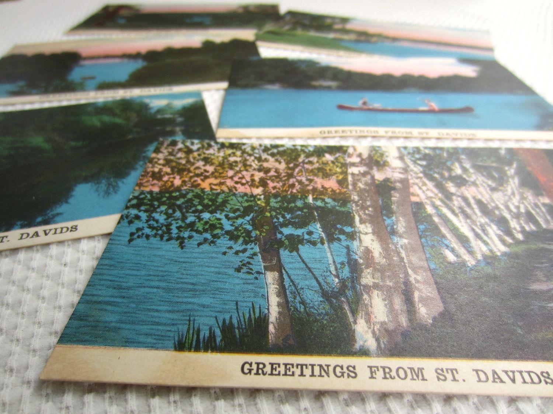 Vintage Nature Postcards