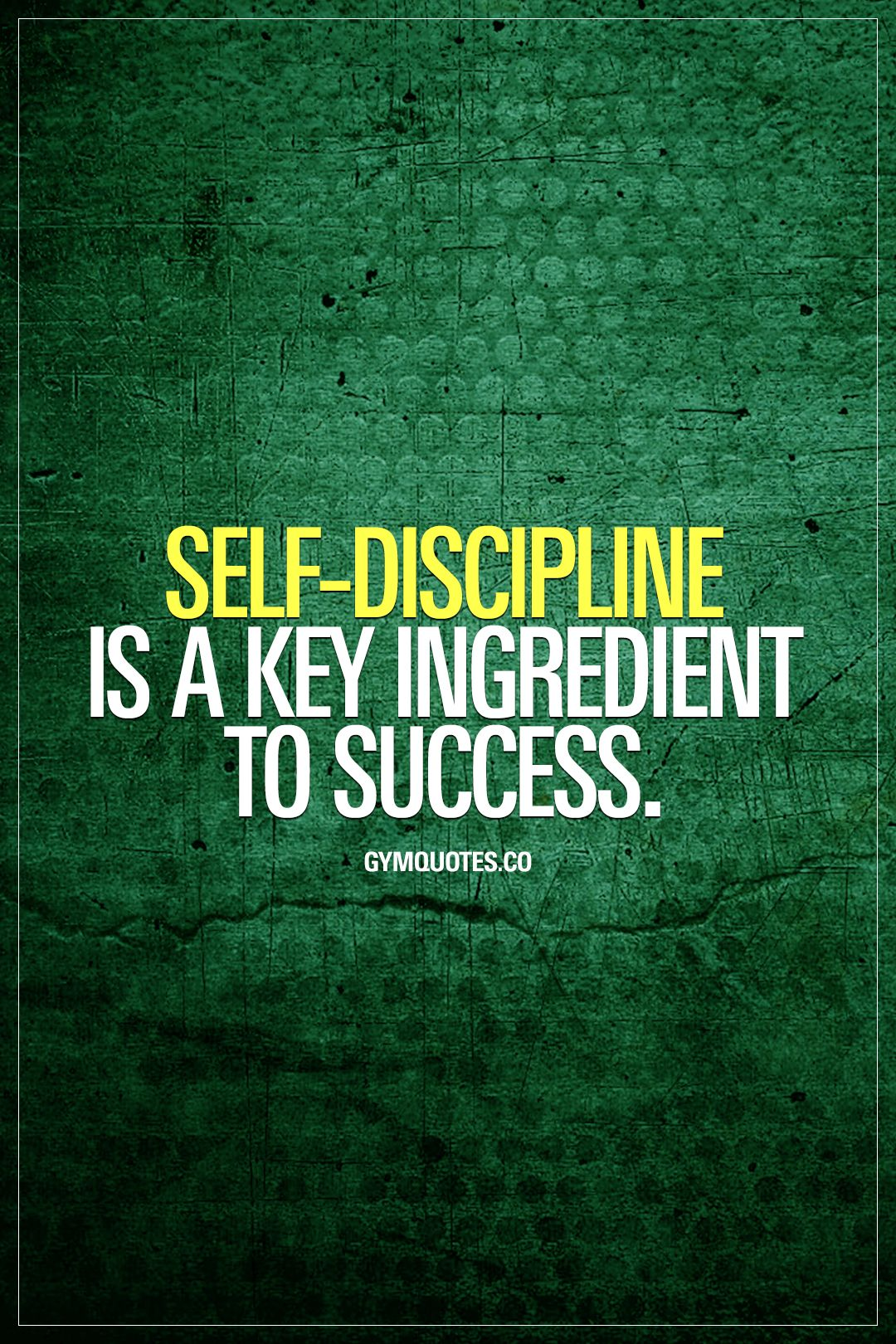 Gym Quotes   Workout, Gym And Fitness Motivation And Inspiration!