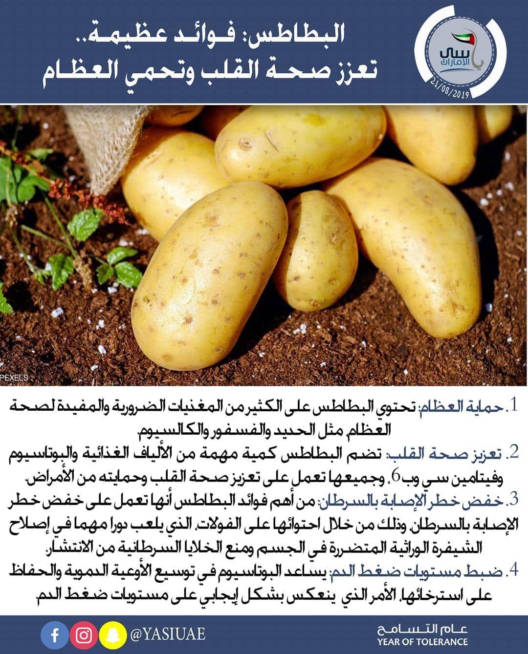 معلومات صحيه فوائد البطاطس ويقول الخبراء إن تناول البطاطس يعود بالعديد من المنافع على صحة الإنسان 1 حماية العظام تحتوي البطاطس Potatoes Vegetables Food