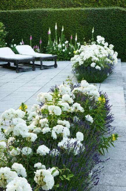 Photo of Trendy hage terrasse design bakgård landskap blomsterbed 47 ideer #Gart …