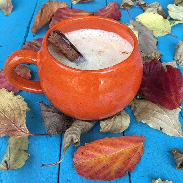 Pumpkin Spice Chai: Easy, 5-minute Recipe #herbs