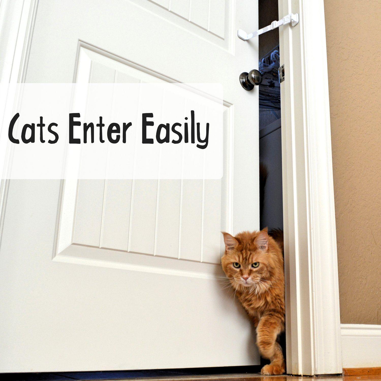 Door Buddy Door Latch Plus Door Stop Keep Dog Out Of Litter Box And