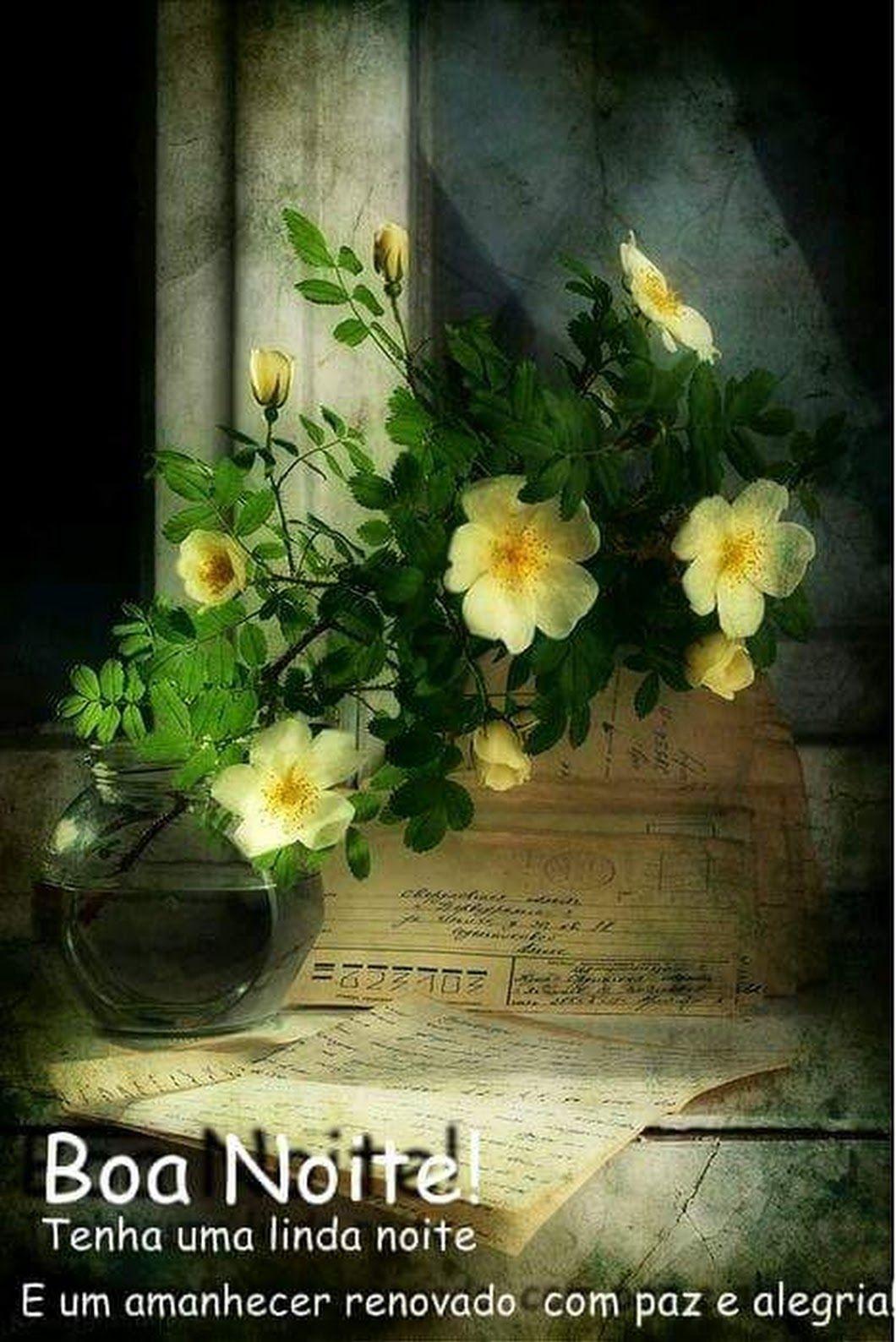 Boa Noite Lindas Paisagens Rosas Vasos De Flores