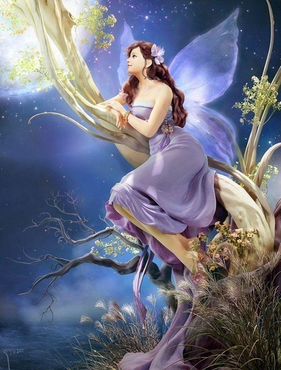 elfen und feen  fantasielandschaft fantasy girl und
