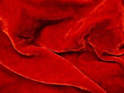 Beckford Silk | Plain Velvet - red - Plain Velvet - red | Silk and velvet fabric at wholesale prices | Bridal Silk and Wedding Silks | Silk ...