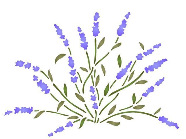Pied De Lavande Pochoir Fleur Dessin Floral Coloriage Fleur