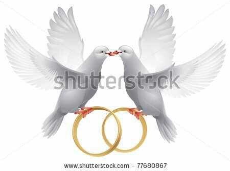 Wedding Symbol Marcos Para Fotos De Boda Dibujos Boda Marco De Boda