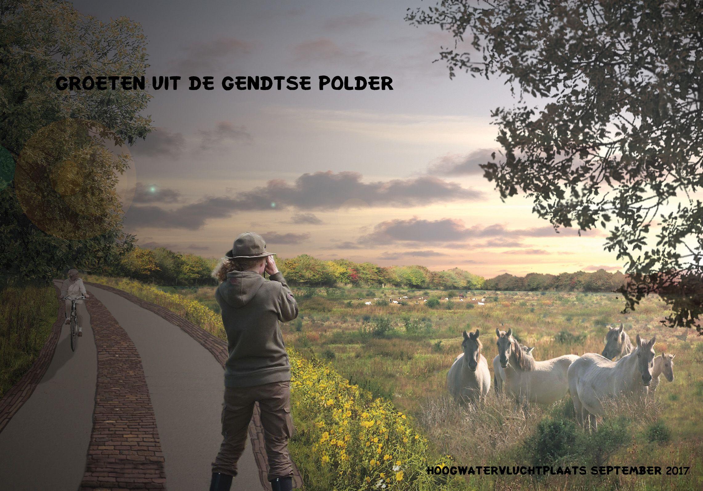 Beeld voor de Gendtse Waard in 2017. De hoogwatervluchtplaats is gesitueerd op de oude steendroogvelden van de baksteenfabrieken en  beschermt nu het wild en de grote grazers tegen hoog water. # Inge Vleemingh