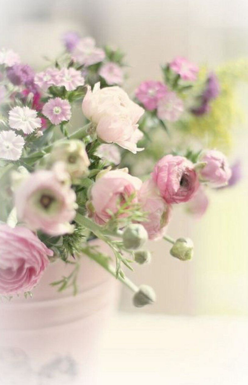 Pin by denise heather on a flowers mixed arrangements pinterest beautiful flower wallpapers for your desktop izmirmasajfo