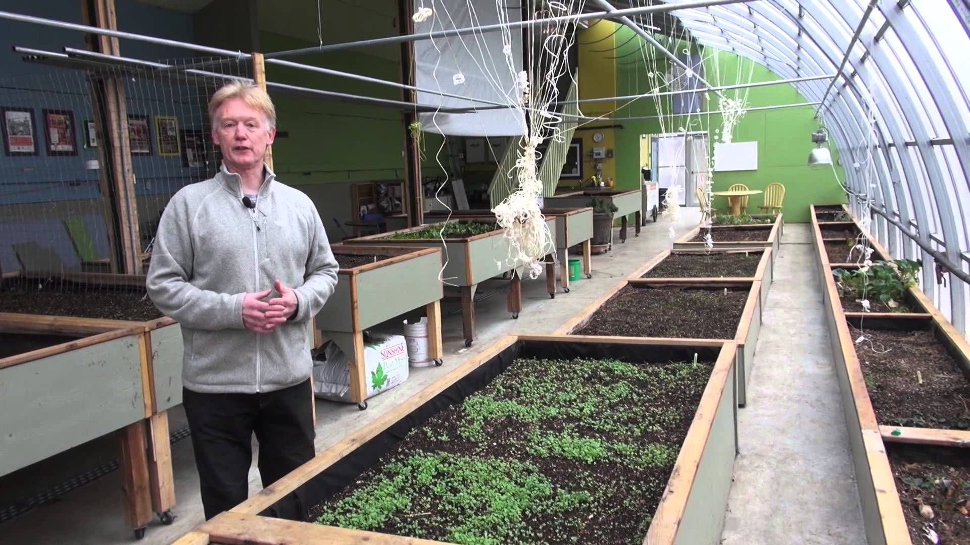 73 passive solar greenhouse a way to produce more local food and