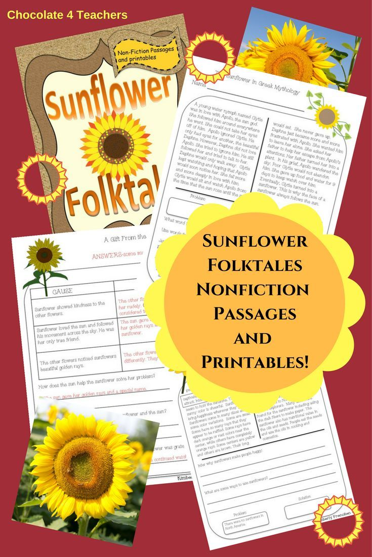 sunflower folktales non fiction passages and printables