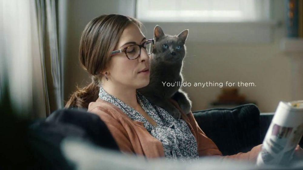 sheba cat food commercial actress