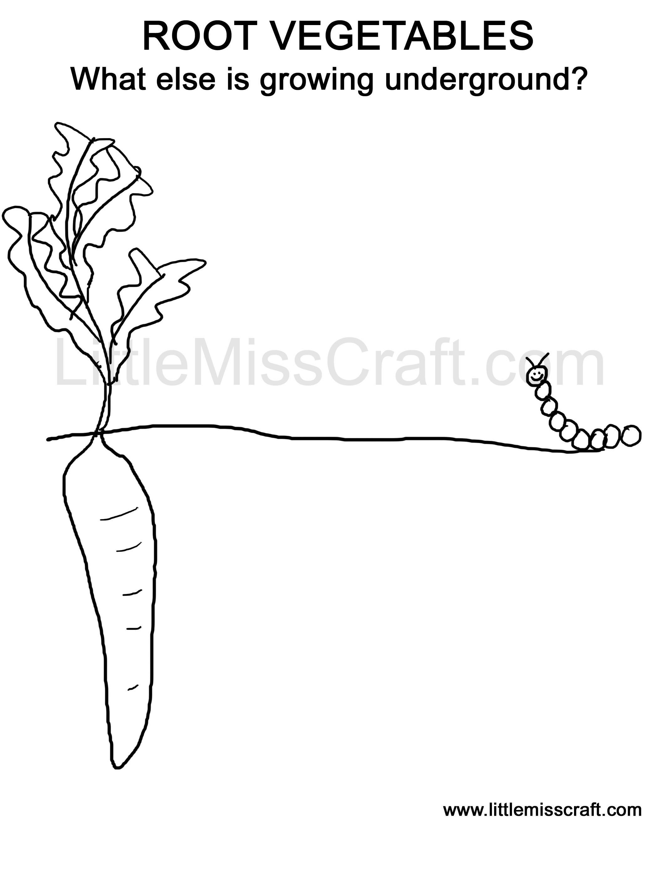 Free Printable Doodle Coloring Page Root Vegetables Growing Gardening