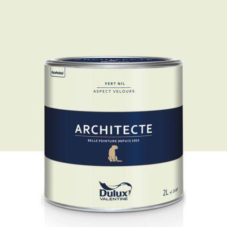 Peinture Vert Nil Mat DULUX VALENTINE Architecte 2 L | Idées Pour Escalier  | Pinterest