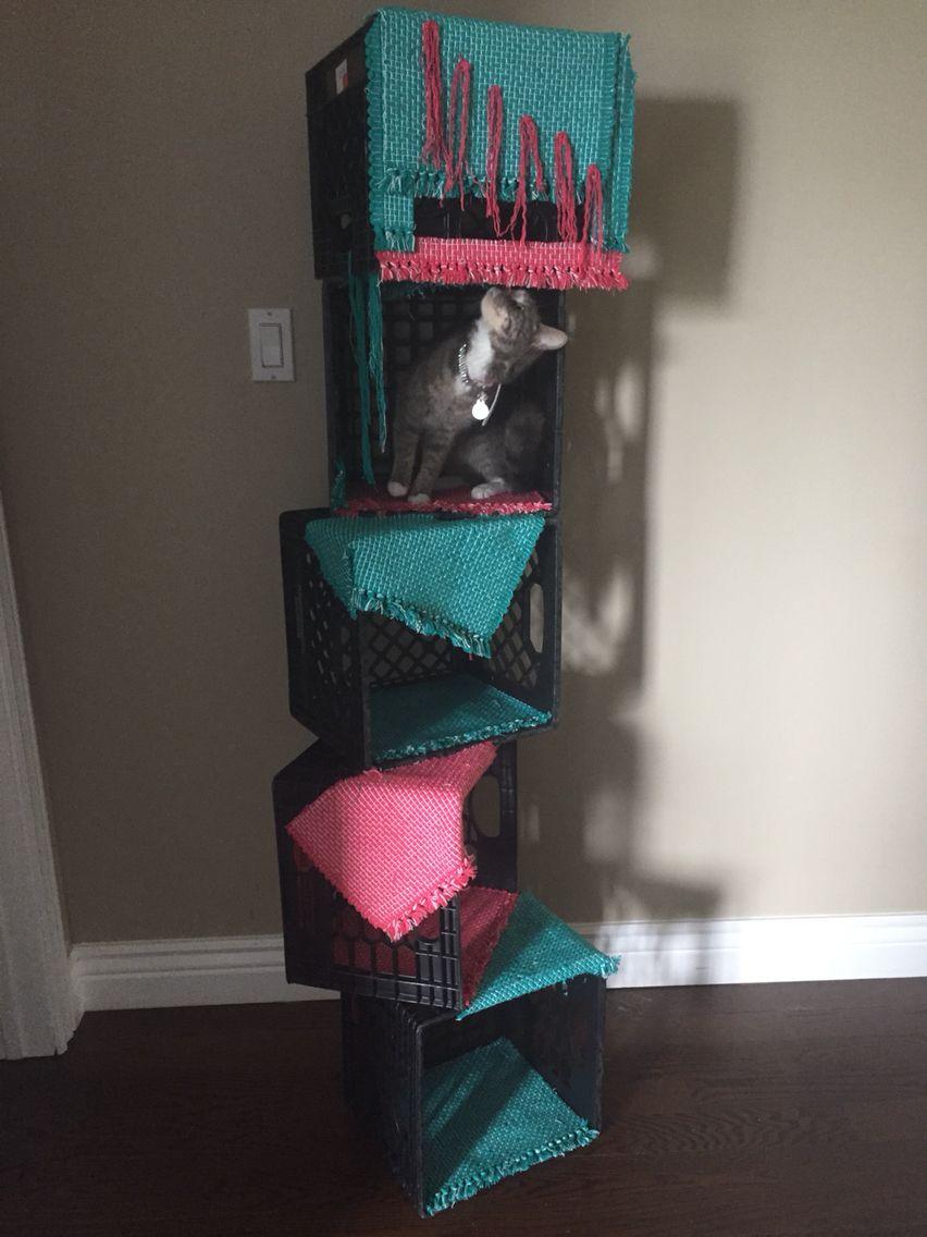 diy cat tree under 25 place mats zip ties and milk crates