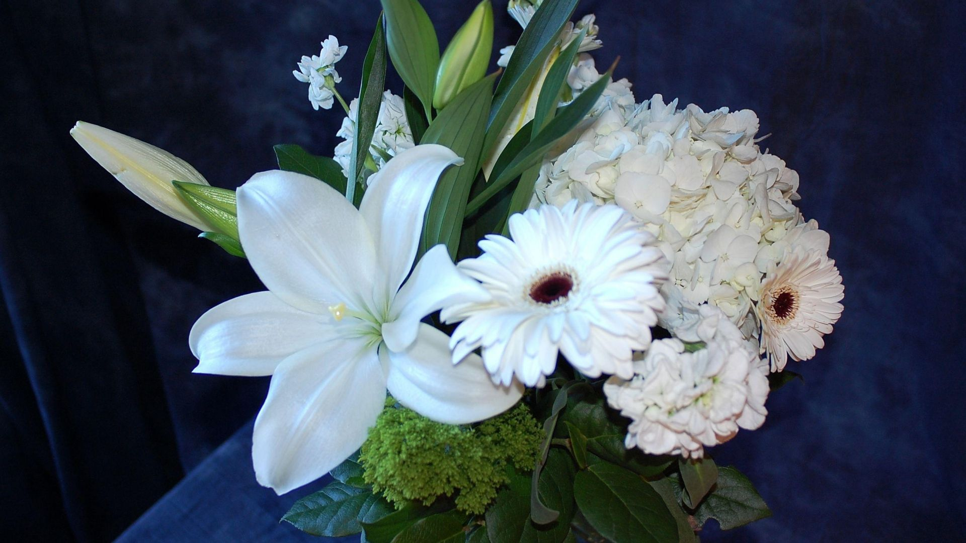 gerberas, lilies, hydrangeas - http://www.wallpapers4u.org/gerberas-lilies-hydrangeas/