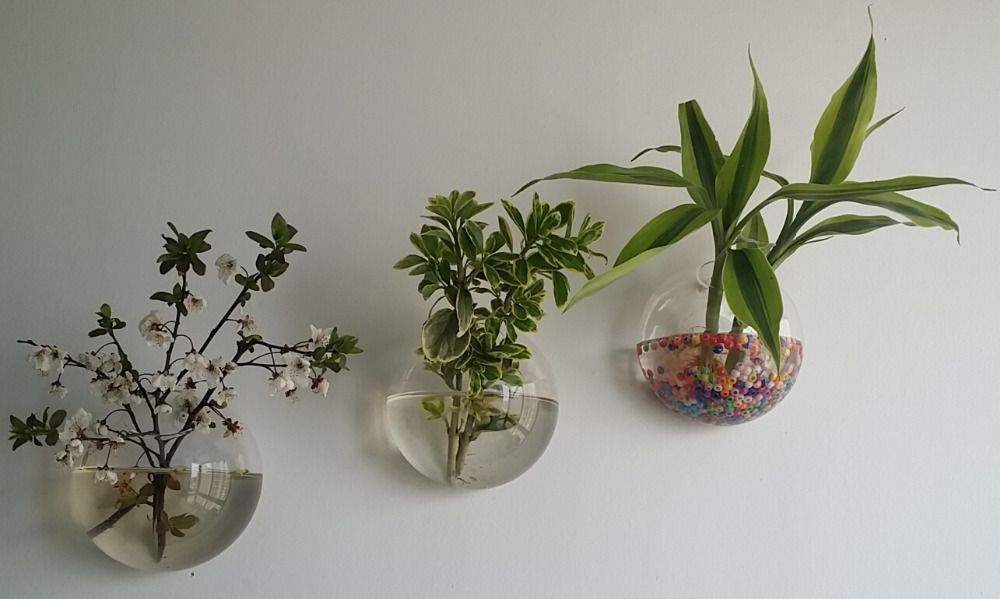 Aliexpress Com Buy Hanging Wall Glass Planter Vase Glass Fish Tank Indoor Wall Decor Air Plant Indoor Plant Wall Wall Planters Indoor Succulent Wall Planter