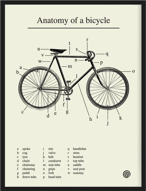 Anatomy Of A Bicycle In A Lovely Print By Antony Oram Pair With