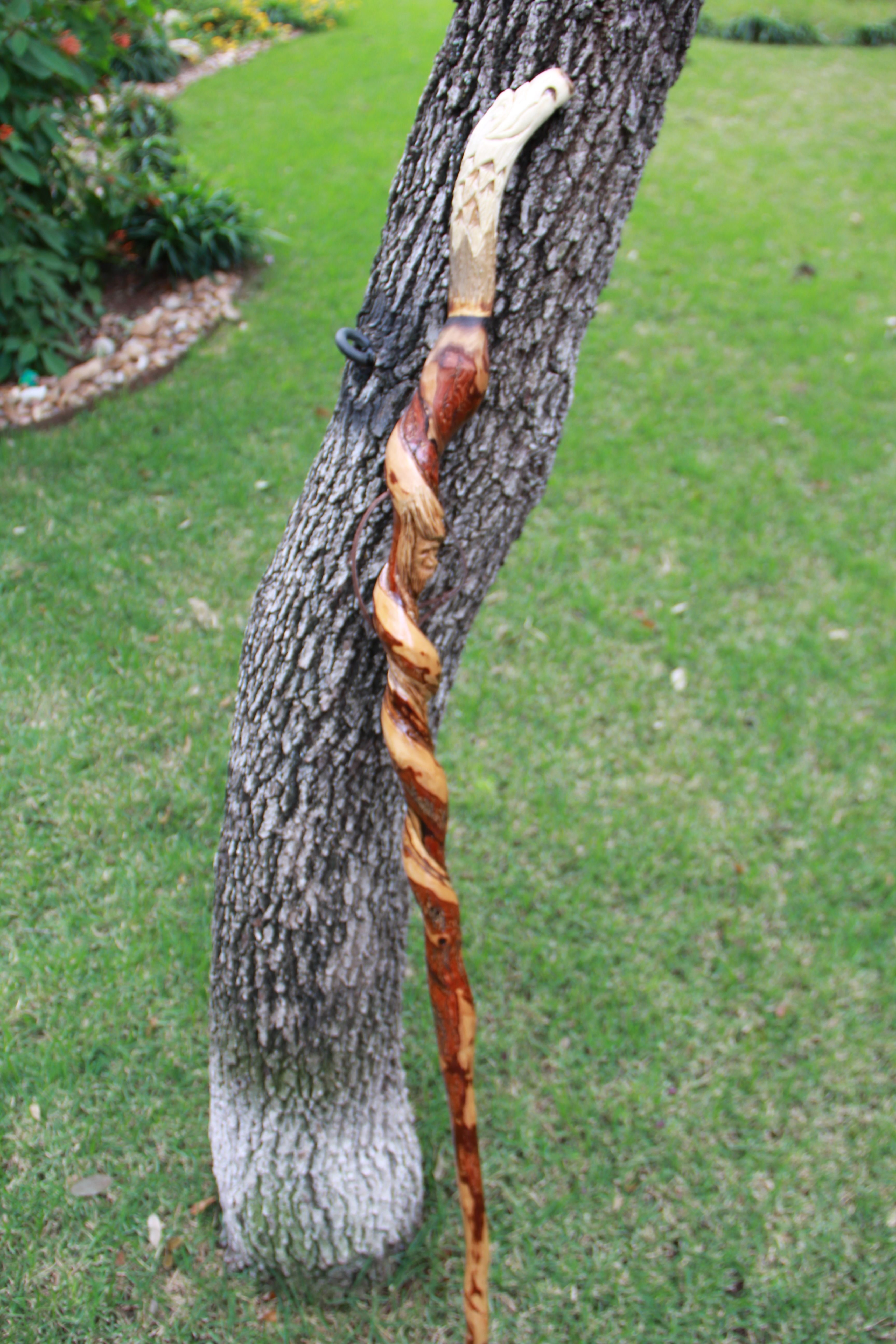 A twisted walking stick with hand carved eagles head out of deer antler.  I met a guy that carves the animals out of antler and used one that he made.
