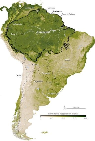 Map Of Where Choclate Comes From Amazon Rain Forest Map South