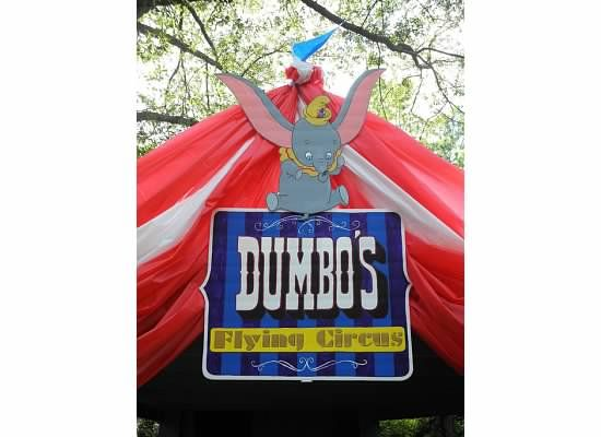 Circus Tent Entrance for Asheru0027s Dumbo Circus Train Party---2nd Birthday  sc 1 st  Pinterest & Circus Tent Entrance for Asheru0027s Dumbo Circus Train Party---2nd ...