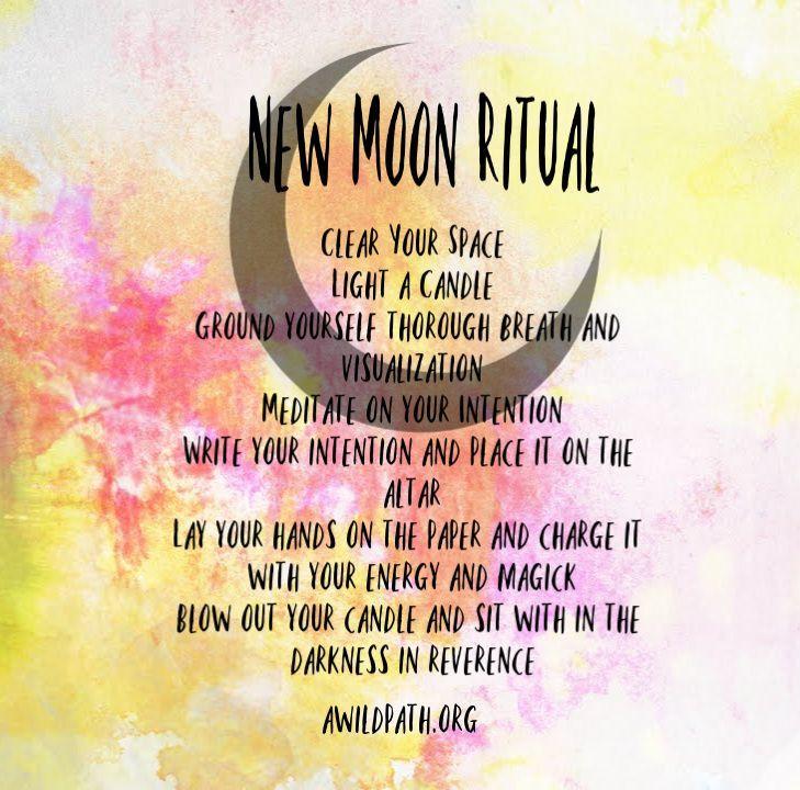 Neumond-Ritual - Ein wilder Weg #newmoonritual