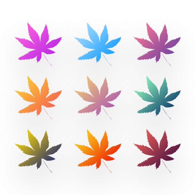 Antumn Leaves Gradient Color Autumn Flower Png Transparent Clipart Image And Psd File For Free Download Gradient Color Color Vector Free Graphic Design