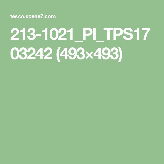 213-1021_PI_TPS1703242 (493×493)