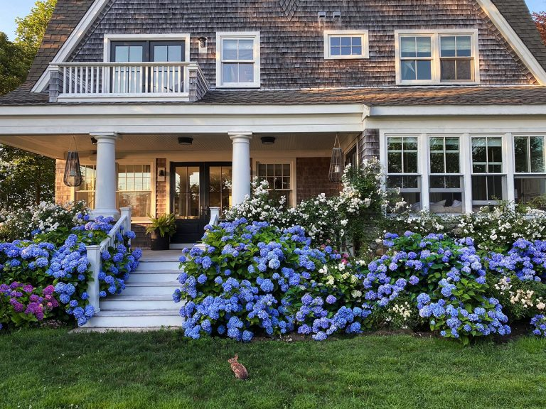 Stunning Classic Cape Cod Home Inspiring Home Tour In 2020 Cape Cod House Cape Style Homes Shingle Style Architecture