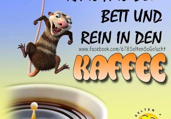 Lustige Guten Morgen Gifs Bilder Kostenmorgenlos Downloaden Food Animals Kaffee Dog Food Recipes