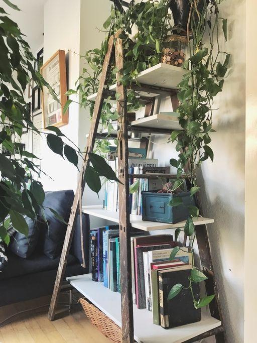 42 Diy Furniture Bookcase Diy Regal Individuelle Regale Selber Bauen So Geht S Diyre In 2020 Furniture Makeover Thrift Store Furniture Makeover Diy Old Ladder