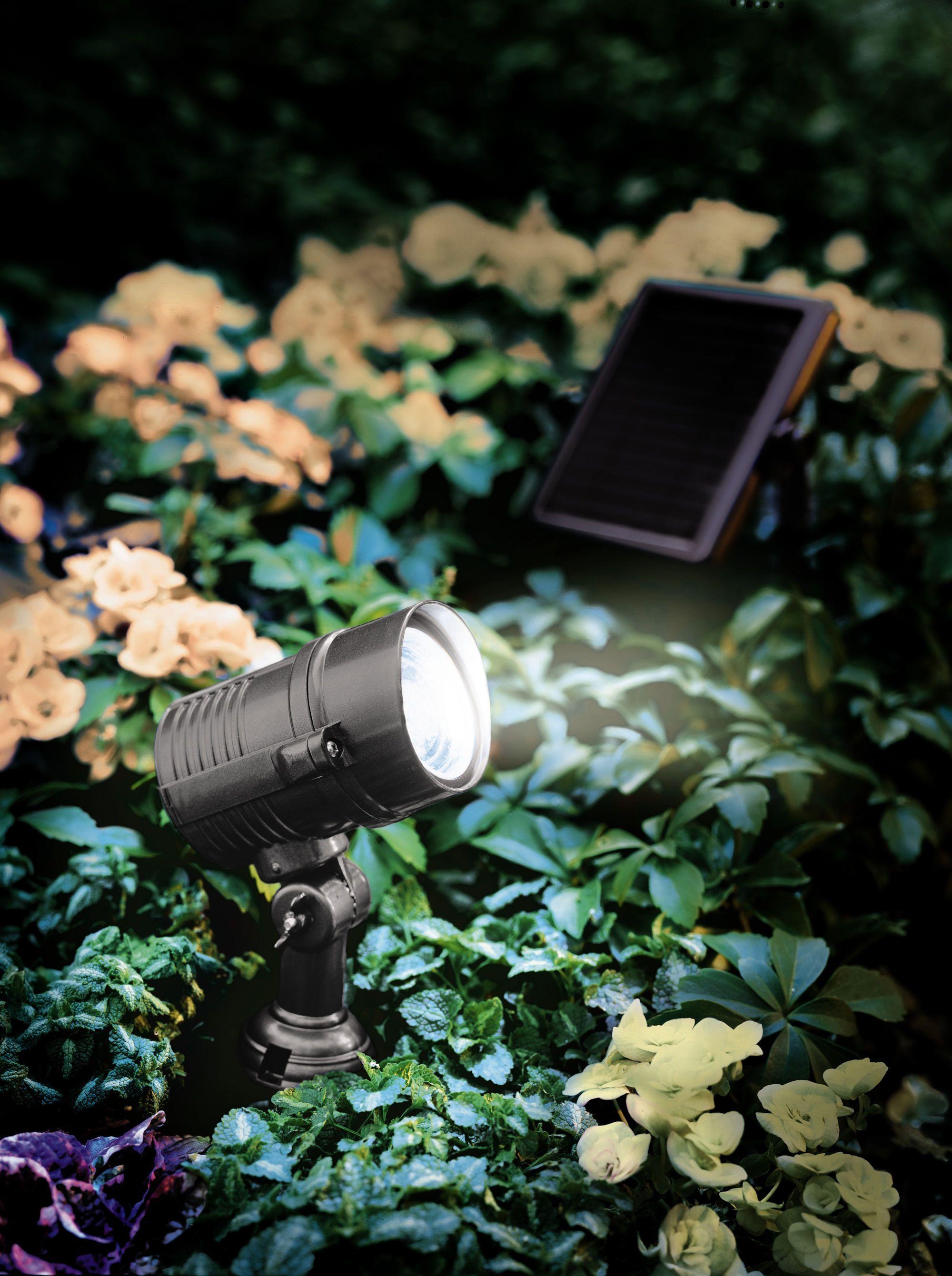 Brightest Solar Lights Superbright Solar Spotlight Gardeners Com Solar Lights Garden Outdoor Solar Lights Garden Supplies