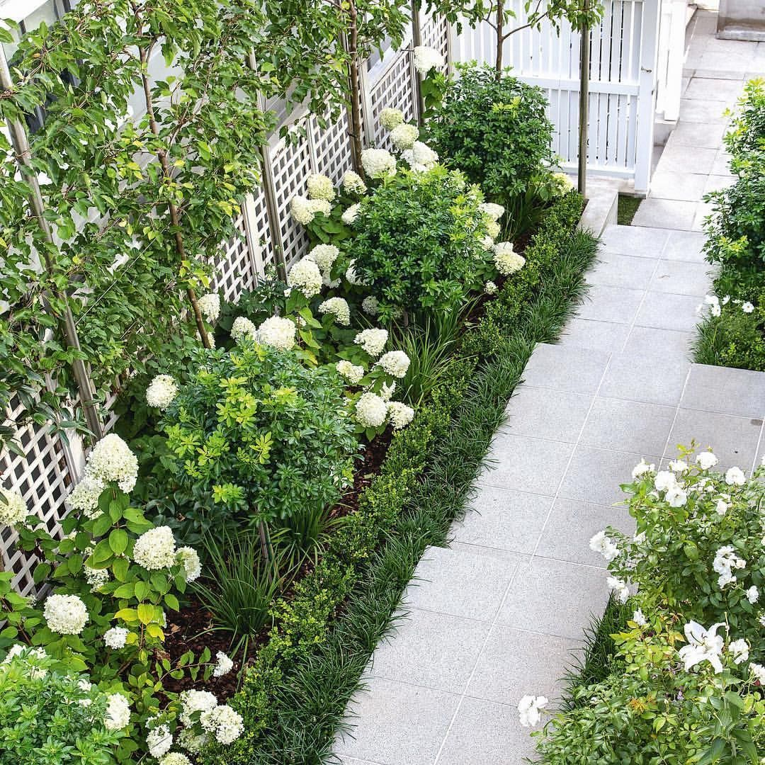 You Don T Need A Large Yard Or Open Space To Grow Your Colorful Garden In Fact All You Need Is A Little Rose Garden Design Tiered Garden Small Garden Design