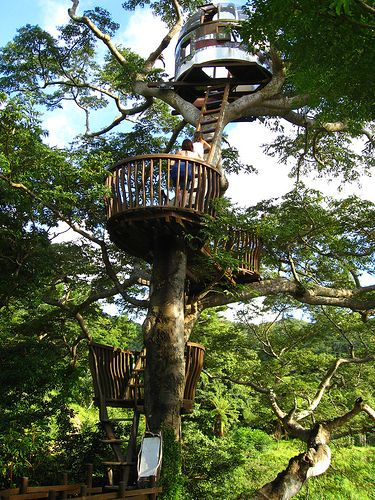 Beach Rock Tree House.  Located in Okinawa, Japan, this cool tree house by Kobayahsi Takashi was constructed with the purpose of communicating with outer space.