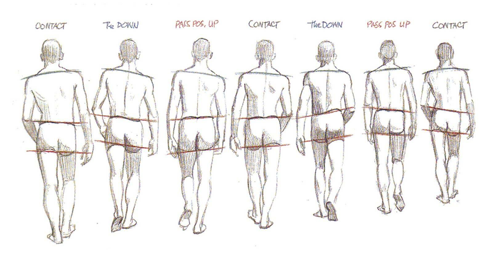 Walking Drawing Reference Walking Poses Drawing Poses Animation Reference