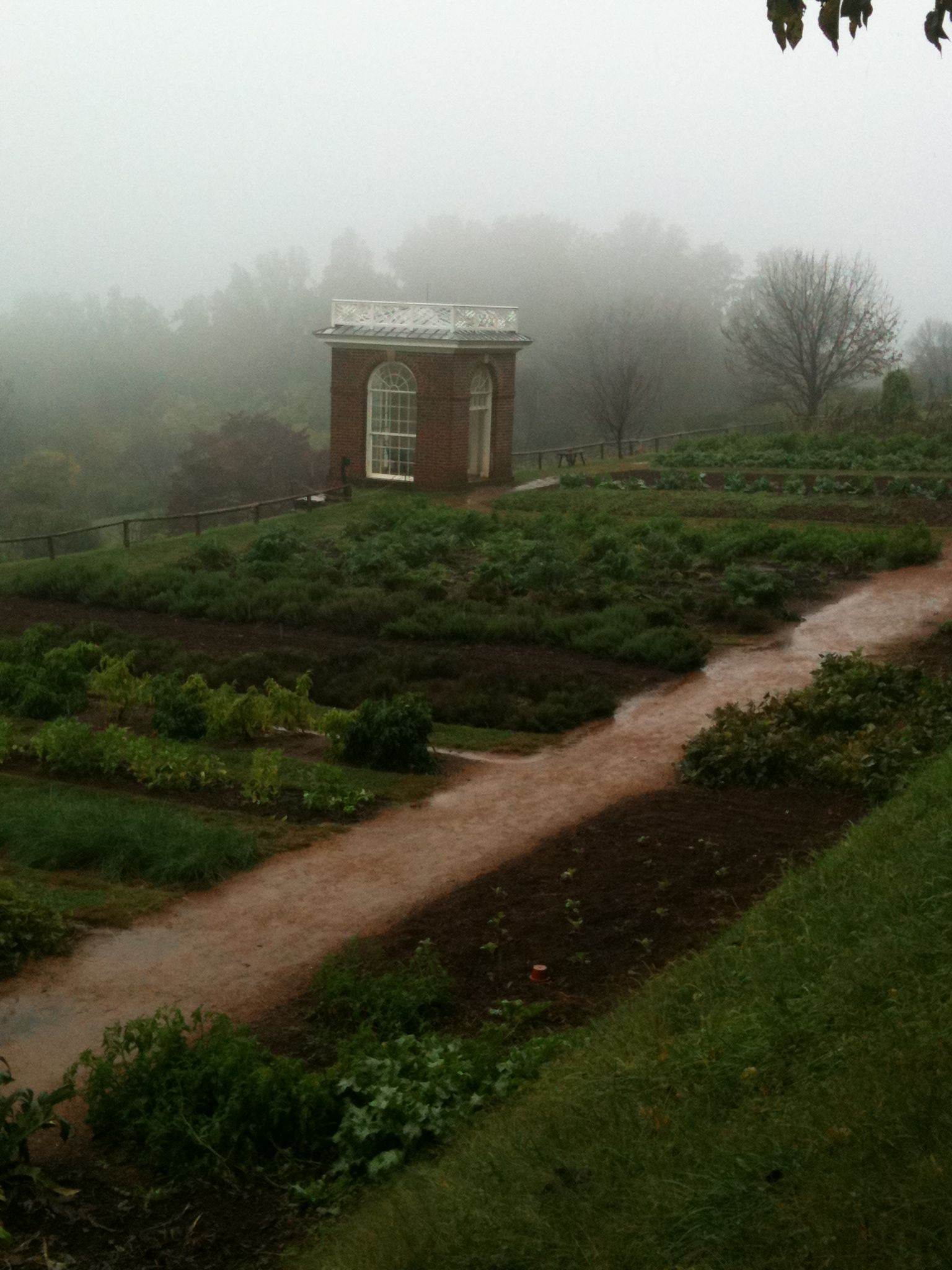 Mystical fall day with vegetable garden plot at Monticello ...