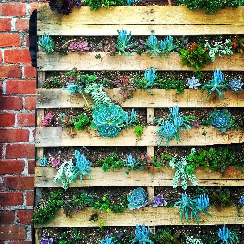 16 Creative Diy Vertical Garden Ideas For Small Gardens: Floral + Garden Inspired Living: 5 Vertical Succulent