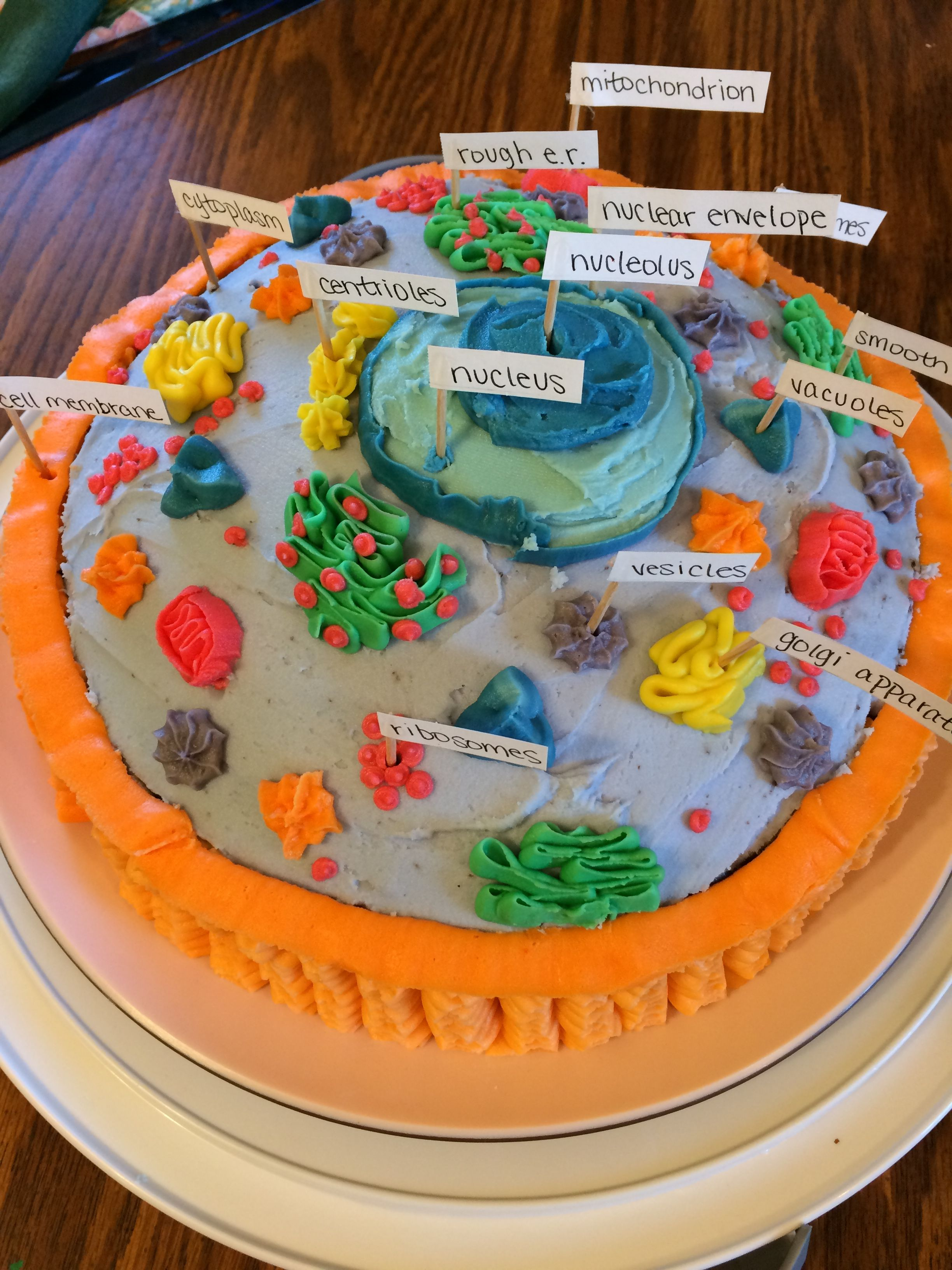 Animal Cell Project Made Of Cake With Images Animal Cell